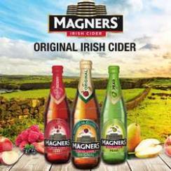 50% Rabatt auf alleSorten Magners Cider in der 0,568l Flasche